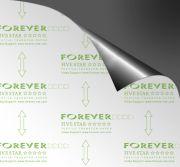 Transfer Forever Five Star