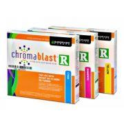 Cartuchos Chromablast-R SG 3110 DN y SG 7100 DN